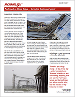 Hurricane Sandy Case Study